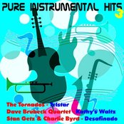 Pure Instrumental Hits, Vol. 3