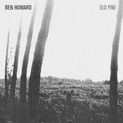 The Old Pine E.P.