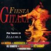 Musica de Fiesta Gitana
