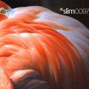 Slim 0097