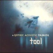 A Gothic Acoustic Tribute To Tool