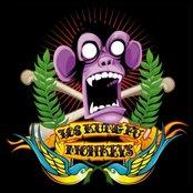 Los Kung-Fu Monkeys