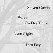 Wires On Dry Trees Turn Night Into Day [CYC-018]
