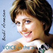 Voice in the Air