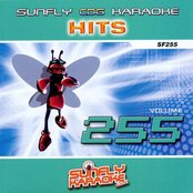 Sunfly Hits: Vol. 255