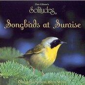 Solitudes: Songbirds at Sunrise