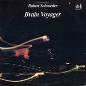 Brain Voyager
