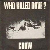 Who Killed Dove?