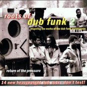 Roots of Dub Funk 2: Return to the Pressure