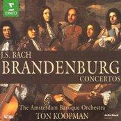 Bach, JS : Brandenburg Concertos Nos 1 - 6, Triple Concerto & Organ Concerto
