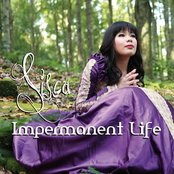 Impermanent Life