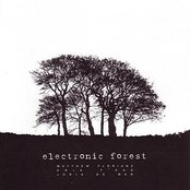 Electronic Forest