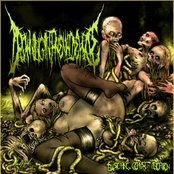 Blistering Corpse Abortion