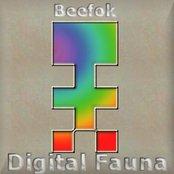 Digital Fauna