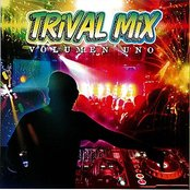 Trival Mix