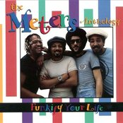 The Meters Anthology - Funkify Your Life (disc 2)