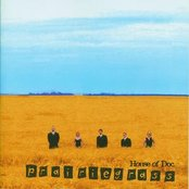 Prairiegrass