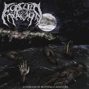 A Stream Of Rotting Cadavers