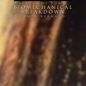 Symphony for a Biomechanical Breakdown