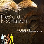 Elephantitis: The Funk And House Remixes