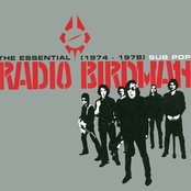 Essential Radio Birdman 1974-78