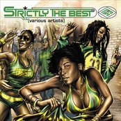 Strictly The Best Vol. 33