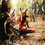 The Call of the Wood