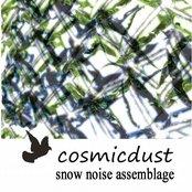 snow noise assemblage