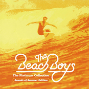 album The Platinum Collection by The Beach Boys