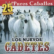 25 Corridos De Puros Caballos