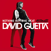 album Nothing But the Beat Ultimate by David Guetta & Afrojack