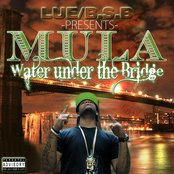 Water Under Tha Bridge