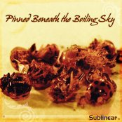 Pinned Beneath the Boiling Sky