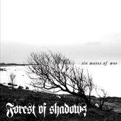 Six Waves of Woe