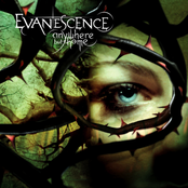 album Anywhere but Home by Evanescence