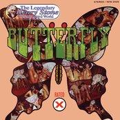 Blowfly Butterfly