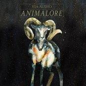 Animalore