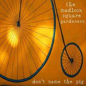 Don't Name the Pig