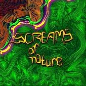 VA - Screams Of Nature (DARKCD002) 2007