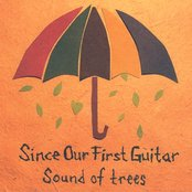 Sound of Trees
