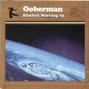 Bluebell Morning EP