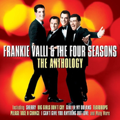 album Anthology by The Four Seasons