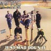 Just Mad Dog'n it