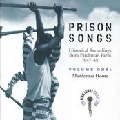 Negro Prison Blues & Songs