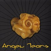Angel Tears, Volume 1