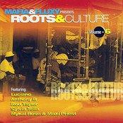 Roots And Culture Vol. 6