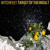 Target of the Insult - Single