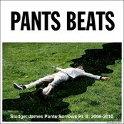 Sludge: James Pants Sorrows, Part II: 2006-2010