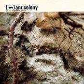 Ant.Colony