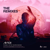 Fade Into Darkness (The Remixes)